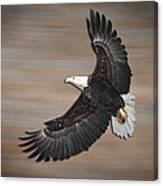 An Artistic Presentation Of The American Bald Eagle Canvas Print