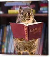 An Educated Squirrel Canvas Print