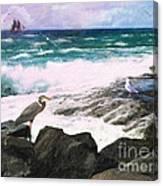 An Egret's View Seascape Canvas Print