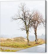 An Empty Path Canvas Print