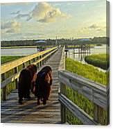 An Evening Stroll Canvas Print
