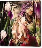 An Iris Surprise Left Canvas Print