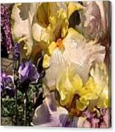 An Iris Surprise Right Canvas Print