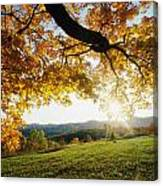 Sunset Over The Hill. Canvas Print