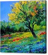 An Oak Amid Flowers In Texas Canvas Print