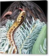 An Uncommon Garter Snake Canvas Print