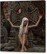Anaglyph Elfa Canvas Print