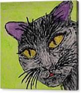 Anahs The Fairy Cat Canvas Print