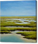 Anahuac Afternoon Canvas Print