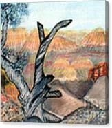 Anceint Canyon Watcher Canvas Print