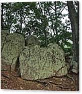 Ancient Boulders Canvas Print