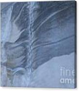 Ancient Upholstery Canvas Print