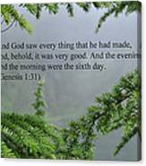 And God Saw Canvas Print