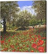 Andalucian Poppies Canvas Print