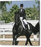 Andalusian-85c Canvas Print