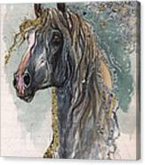 Andalusian Horse 2014 11 11 Canvas Print