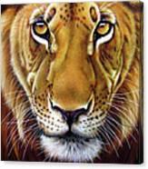 Andre Lion Canvas Print
