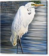 Angel At Sylvia's Pond Canvas Print