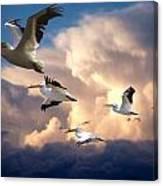 Angels In Flight Canvas Print