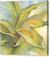 Angel's Pirouette Canvas Print