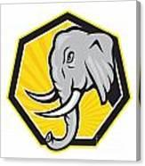Angry Elephant Head Side Cartoon Canvas Print
