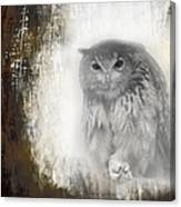Angry Owl's Talons Canvas Print