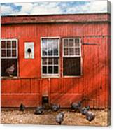 Animal - Bird - Bird Watching Canvas Print