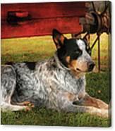 Animal - Dog - Always Faithful Canvas Print