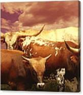 animals - cows- Longhorns La Familia  Canvas Print