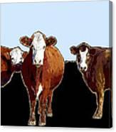 Animals Cows Three Pop Art With Blue Canvas Print