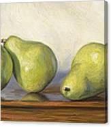 Anjou Pears Canvas Print