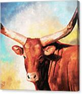 Ankole Bull Canvas Print