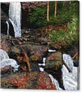 Anna Ruby Falls Canvas Print