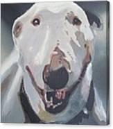 Anna The Bullie Canvas Print