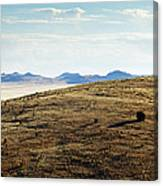Another Color View Of West Texas Canvas Print