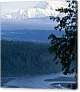 Another Denali View  Canvas Print