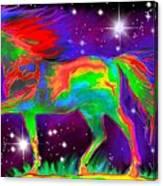 Another Rainbow Stallion Canvas Print