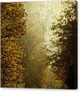 Another Road Travelled Canvas Print