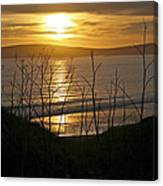 Another Sunset At Bodega Canvas Print
