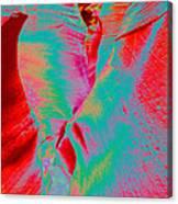 Antelope Canyon Abstract Canvas Print