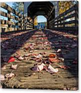 Antelope Creek Bridge Canvas Print