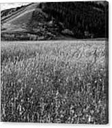Antelope Flats Canvas Print