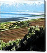 Antelope Island Wasatch Mountains Utah Canvas Print