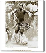 Anthony Howarth Collection - Gold - Sunday Mine Dance 2 - S.a. Canvas Print
