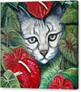 Anthurium Assassins Canvas Print