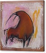 Antibullfight II Canvas Print