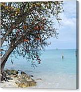 Antigua Canvas Print