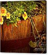 Antique Bucket With Yellow Flowers Canvas Print