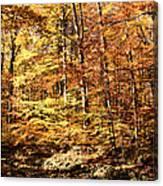 Antique Fall Canvas Print