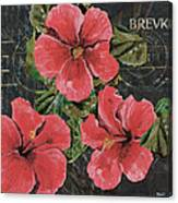 Antique Hibiscus Black 3 Canvas Print
